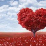 W不倫の恋愛は様々な相性が重要?長期交際が見込める既婚者男性との相性とは